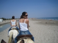 A cavallo in Camargue